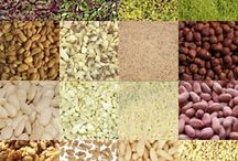 Dry nuts for confectionery and bakery industry
