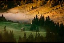 Bucovina / We love Bukovina.