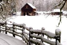 Winter - Hiver - Zima