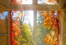 Musim / #autumn #rainy #sunny #winter #spring #summer