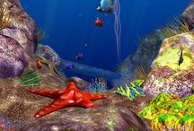 """"""" Under the Sea'' / The most beautiful pictures"""