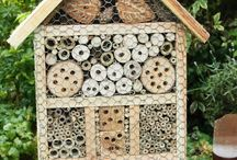 Bug house / Insect hotels