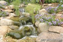Pond and Fountain / by Monika Schmid