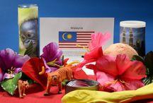 Experience Malaysia