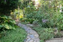 Pavement in Gardens