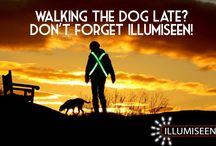 Dog Walking / Training / Keep yourself and your treasured pet safe at night with Illumiseen! Take advantage of a 40% discount today here: http://amzn.to/1uBE0hL