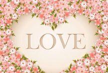 flores blancas fondo rosa
