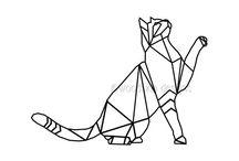 gatos,caballos y otros animales