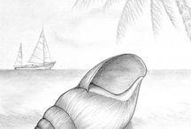 shell's art