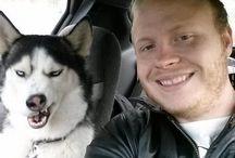 UPSET DOGS & PETS
