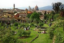 What to do in Florence / Best places to visit in Florence