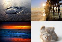 Reach the Beach / Beachy stuff / by Bonnie King