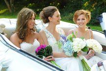 Wedding Services Mansfield, Nottinghamshire, Derbyshire & Beyond