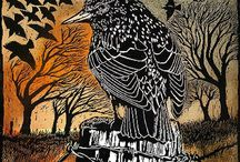 Rook / Loving the magic of magpies, crows, ravens and rooks