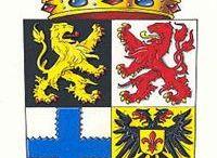 Gemeentewapen / Het huidige Gulpen-Wittem is op 1 januari 1999 ontstaan uit een samenvoeging van de gemeenten Gulpen en Wittem, die weer tientallen kernen, dorpen en gehuchten omvatten.  Bij de totstandkoming van de gemeente Gulpen-Wittem is een nieuw gemeentewapen ontwikkeld. Het wapen bevat elementen van de voormalige gemeenten Gulpen, Wittem, Slenaken en Wijlre. Gemeentewapen, city arms, the municipal arms