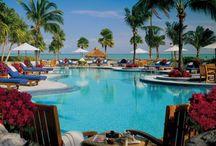 FLORIDA / by Nancy Savage