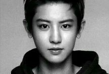 EXO || Chanyeol