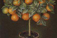 Фрукты, ягоды,овощи / Картинки для декупажа