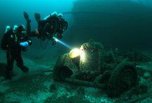 divers dream