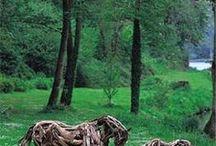 Cavalos de galhos de árvores
