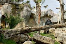 instalación zoo
