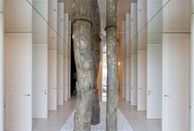 Trees in interiors