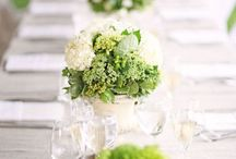 Green Weddings / From light lime to rich emerald, green is a fresh and fabulous color to incorporate into your big day. Check out these amazing options for your green wedding!
