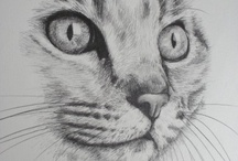kočka kresba