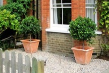 Home - Front Gardens