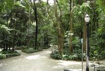 Parks of São Paulo