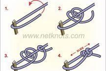 Nœuds