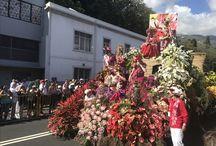 Blomster festival