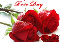 Happy Rose Day .