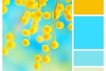 Colour Inspiration: Summer Bright / Australian Wattle
