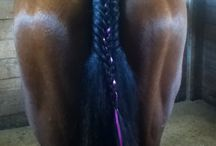 Horses / My granddaughter braided this horses tail. So pretty!