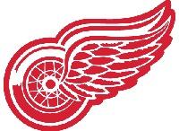 Detroit Red Wings / by Sandra Filipovic