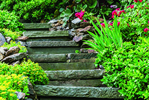 Miraculous Garden Makeover / We've got the inspiration you need to make your home garden beautiful! / by Westchester Magazine