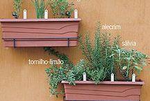 plantas/jardinagem