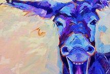 Animals - Donkeys/Mules/Burros