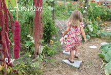Waldorf/Montessori inspired / by Lorene Mozsa