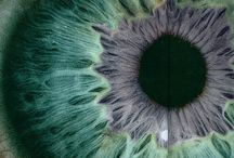 ° Eyes