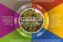 Marijuana Knowledge / All kinds of nice informational graphics about marijuana.