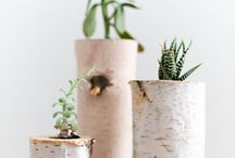 Botanicals / Greens, florals