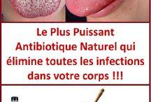 Antibiotique naturel