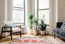 PLANTAS / Decorar tu casa con plantas interiores y exteriores