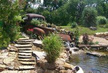 Backyard / by Brandi Larkin