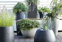 Outdoor Decor / Decorating ideas for outside the home.
