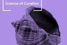 City Gallery // Maori Art Curation // Curation Projecto