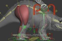RIGGING - 3D Models / Animation rigging for 3D character development