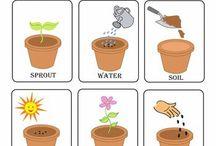 Gardening Unit